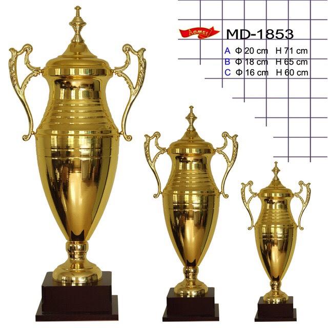 Cúp Vàng Bóng Đá Mẫu 3