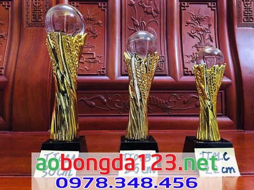 Cúp Vàng Bóng Đá Mẫu 9